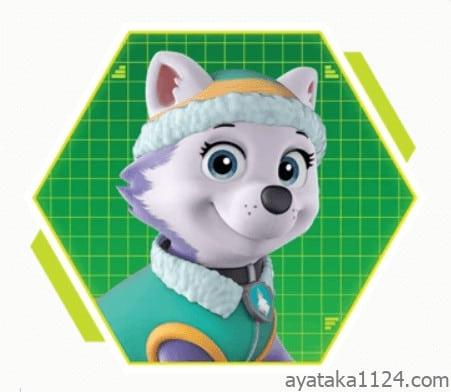 パウ・パトロール│キャラクターの名前とイラストを紹介。パウパトロールのハイテンション女子「エベレスト」。エベレストの犬種は「シベリアン・ハスキー」