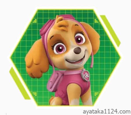 パウ・パトロール│キャラクターの名前とイラストを紹介。パウ・パトロールのヒロイン!「スカイ」。スカイの犬種は「コッカプー」