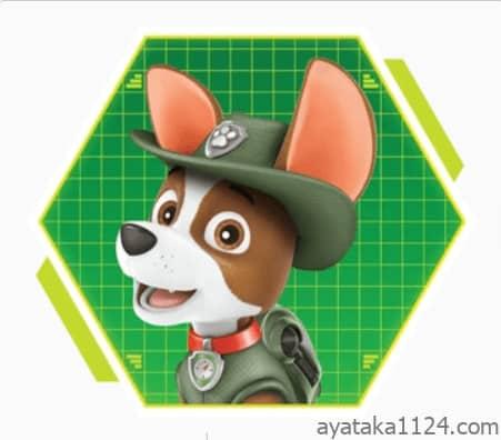 パウ・パトロール│キャラクターの名前とイラストを紹介。パウパトロールの探偵さん!?「トラッカー」。トラッカーの犬種は「チワワ」